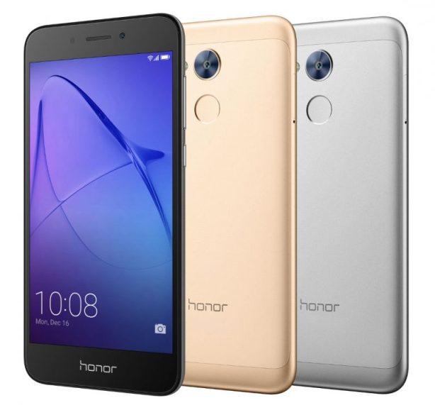 Honor Holly 4 Photo